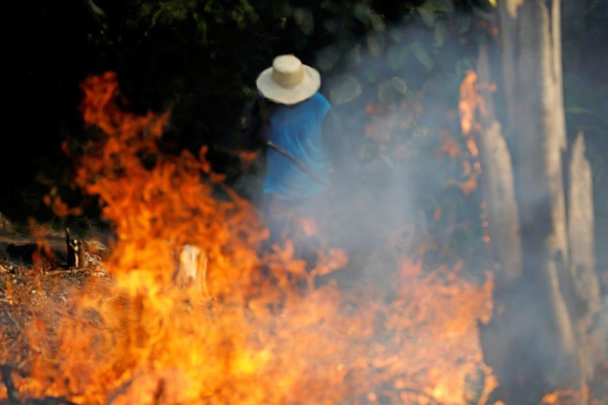 Концерн LVMH пообещал направить €10 миллионов на спасение горящих лесов Амазонии