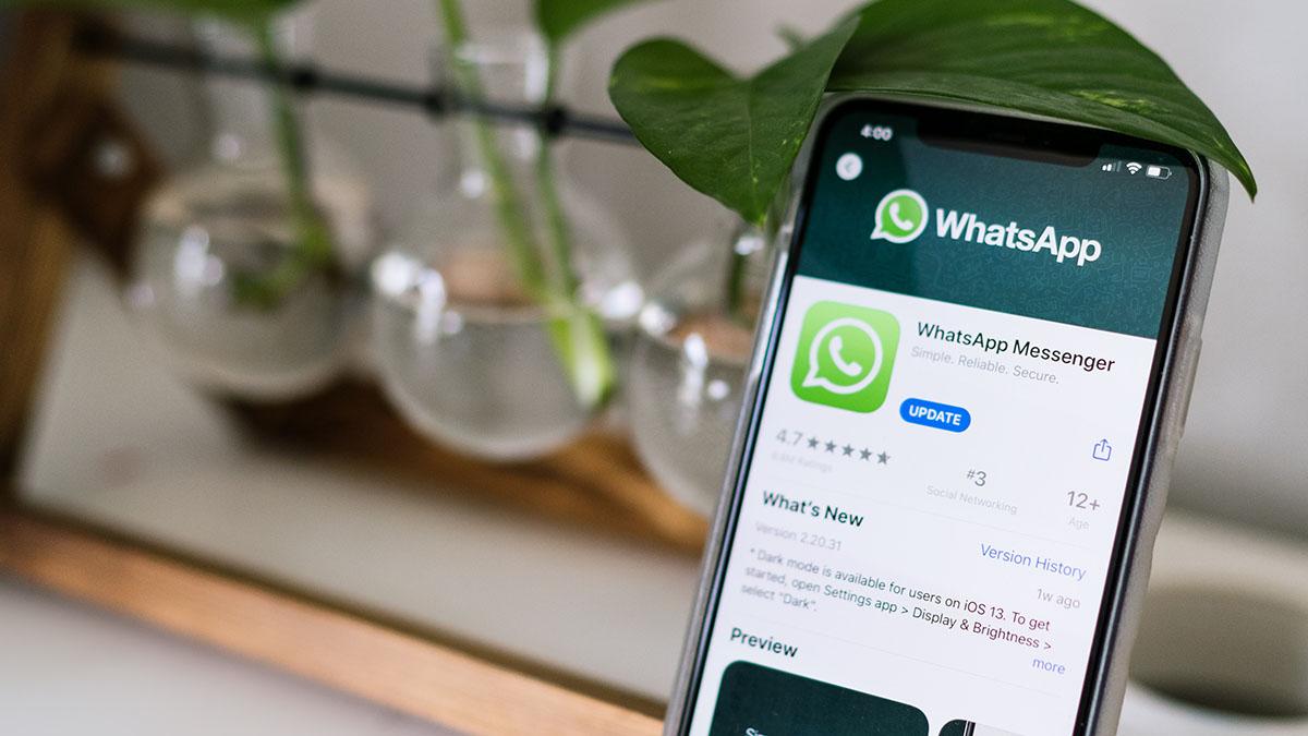 Реклама в WhatsApp: главное обновление мессенджера в будущем