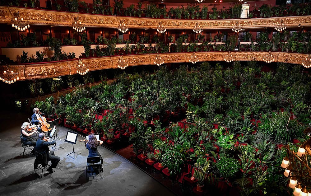 Classical and contemporary art under the roof of the Teatro Liceo in Barcelona
