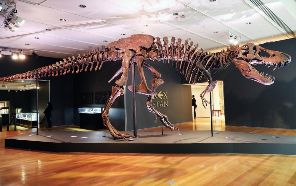 На аукционе Christie's продали скелет тираннозавра