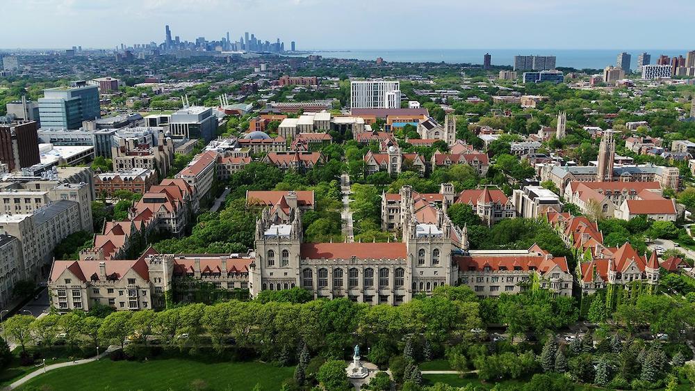 Чикагская школа права